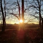 Sonnenuntergang über dem Lohner Esch