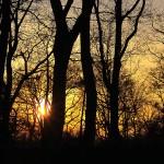 Sonnenuntergang in Nordhorn (1)